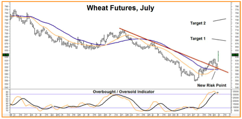 Wheat Futures, July