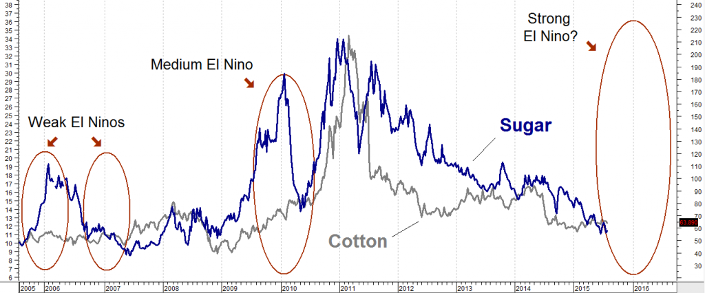 cotton sugar el nino