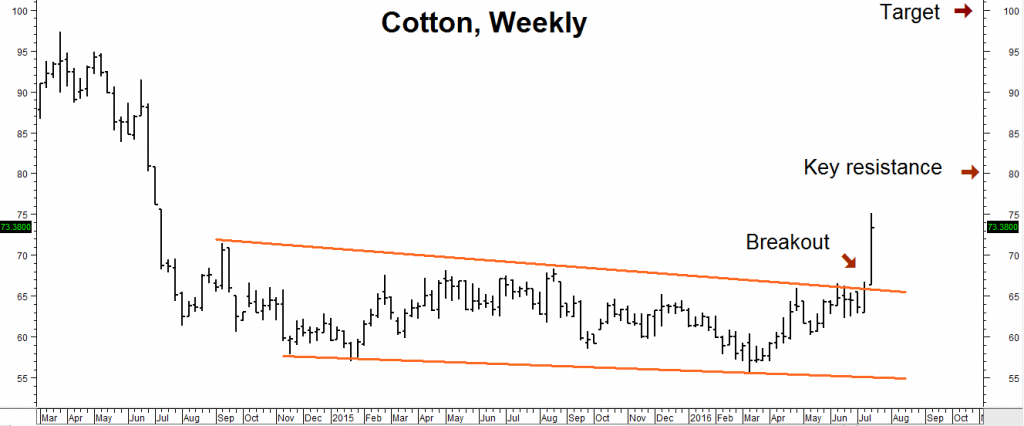 cotton weekly